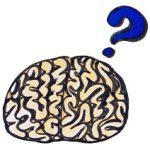 からだの癖を身につける=脳トレ