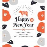 【謹賀新年】2021年はどんな1年にしていきますか?
